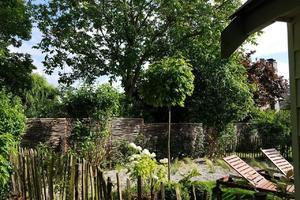 WS Garden - Galerie photos